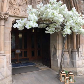 blossom canopy tree wedding decoration church hire ni