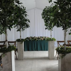 fiscus tree aisle decor