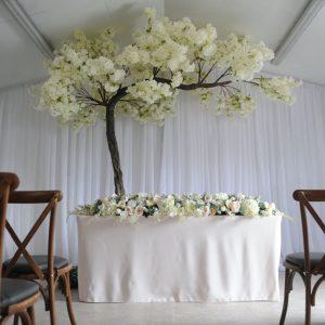 blossom canopy tree