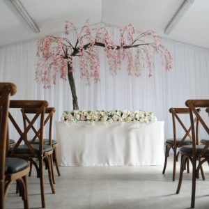 Blush Canopy Tree