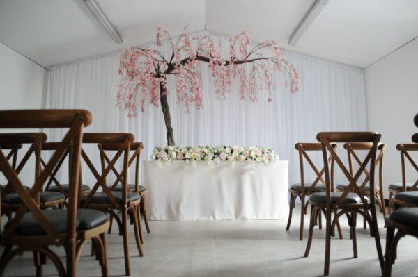 Blush Canopy Tree