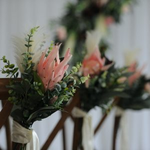 blush protea pewends