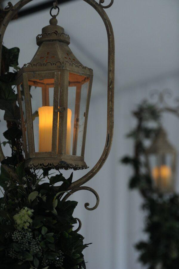 tall foliage lanterns